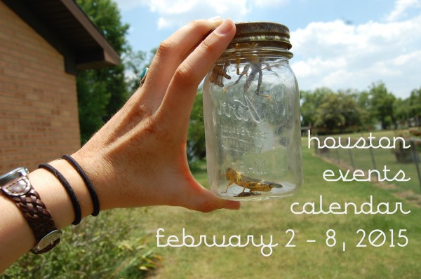 houston events calendar 2 2 8 2015